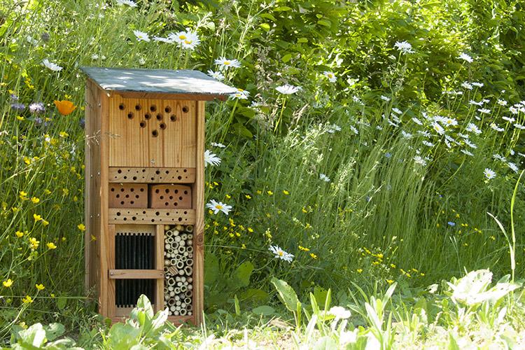 Installer un refuge pour insectes auxiliaires