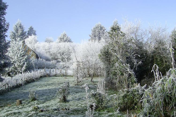 Les travaux d'hiver dans le jardin